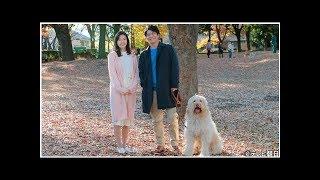 萩原聖人、ラブラドゥードル犬との共演に感動「本当に優秀な子」