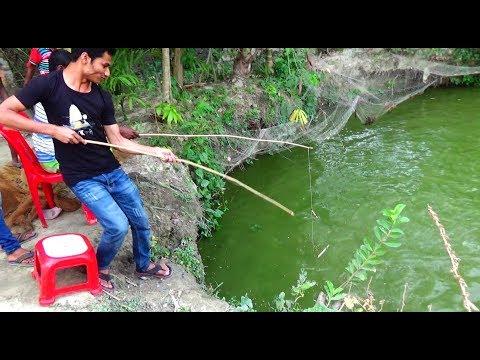 Best Live Fishing Video (Part-10)