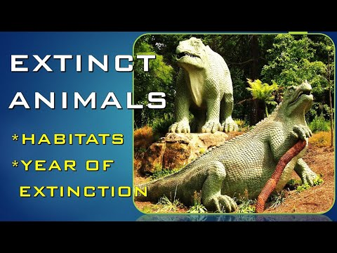 ANIMALS THAT GONE EXTINCT |HABITATS AND YEAR OF EXTINCTION (#14)