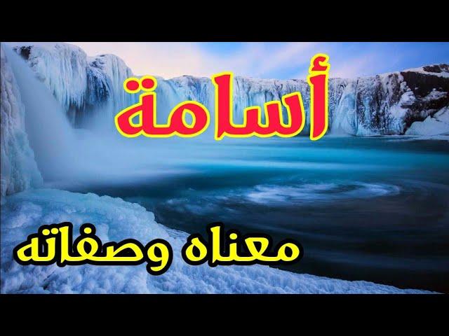 معنى اسم أسامة و صفات حامل هذا الإسم Youtube