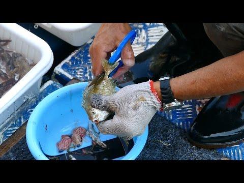 Amazing Cutting Fish At Sai Kung Seafood Market - Hong Kong