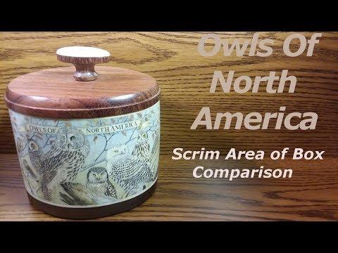 scrimshaw-steps-by-adams---ivory-box;-owls-of-north-america