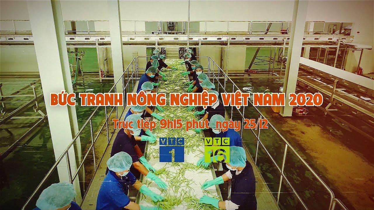 [Trực tiếp] Bức tranh nông nghiệp Việt Nam 2020, sáng 25/12/2020 (lúc 09h15) | VTC16