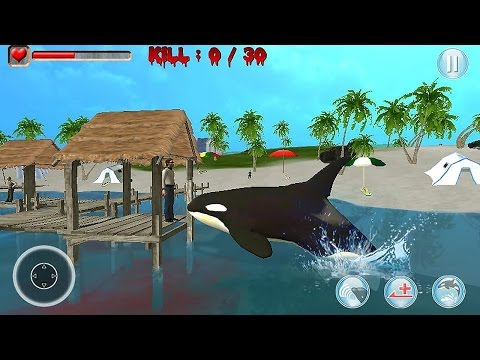 Killer Whale Simulator 3D - Gameplay Android
