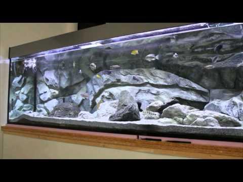 Dennerle osmose compact 130 im betrieb funnydog tv for Aquarium wasserwechsel