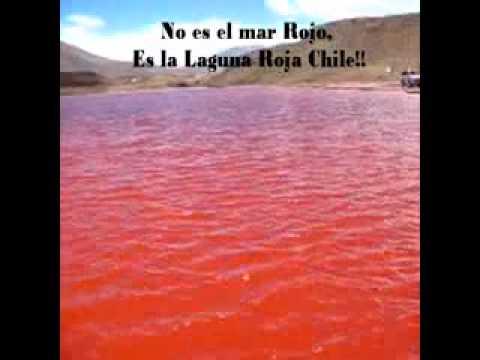 No Es El Mar Rojo Es La Laguna Roja En Chile Youtube