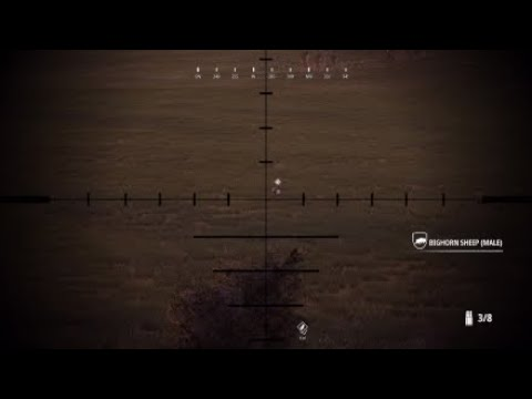SHAREfactory™: Hunting simulator 2 big horn sheep |