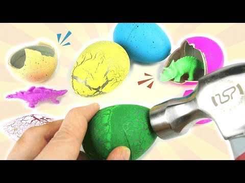 Hatch Dinosaur Eggs with Hammer! Learn Jurassic Cretaceous dinosaurs. Science Kit for Kids~ 공룡알 부화