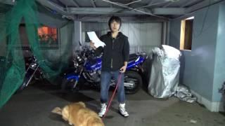 普通免許で125ccのバイクが運転出来るようになりますが thumbnail