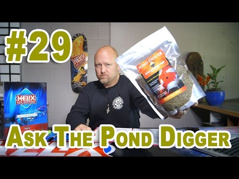 Fish Food, Calculation Pond Rock & Pond Liner - Ask T.P.D. Show 29