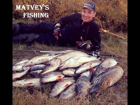 рыбалка видео рыбинск водохранилище