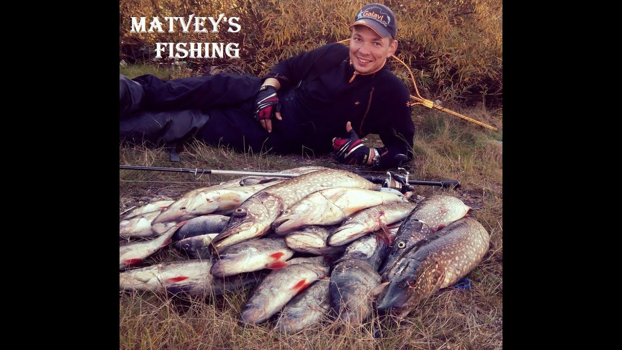 Ловля на спиннинг на Рыбинском водохранилище
