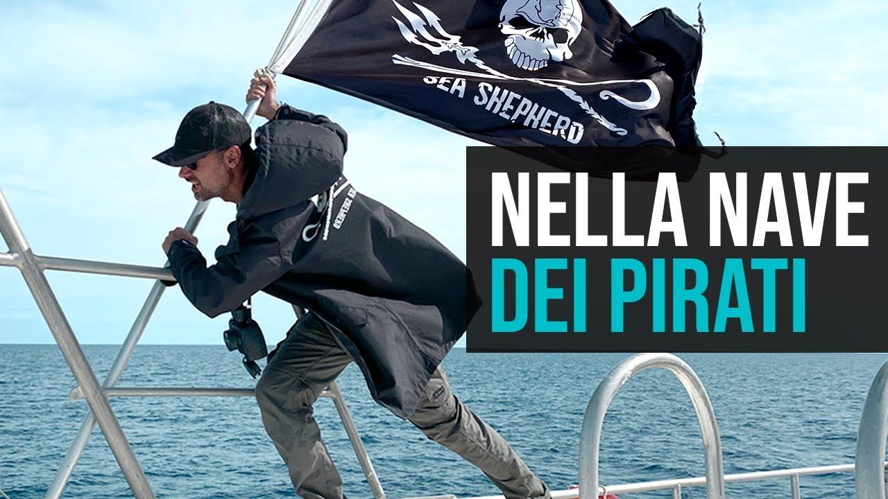 Contro la pesca illegale (A bordo con Sea Shepherd)