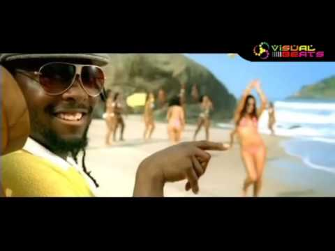 Will I Am - I Got It From My Mama (DJ BAKI CENGIZ Remix)