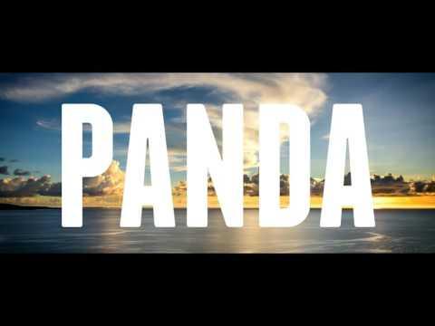 Martin Garrix ft  Marshmello -  Panda