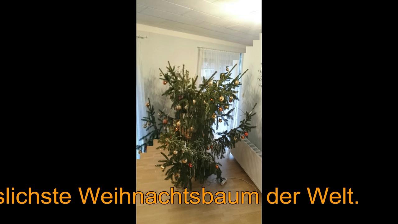 der wom glich h sslichste weihnachtsbaum der welt 2016. Black Bedroom Furniture Sets. Home Design Ideas