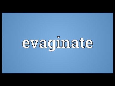 Header of evaginate