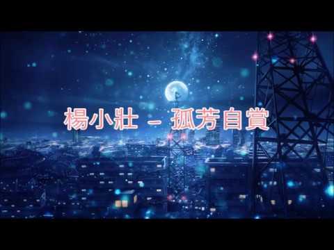 Yang Xiao Zhuang 楊小壯 - 孤芳自賞 Gu Fang Zi Shang [歌词/Pinyin] [Something Just Like This]