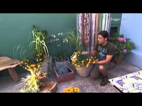 decogarden jardiner a mezcla de texturas en tonos On decogarden jardineria