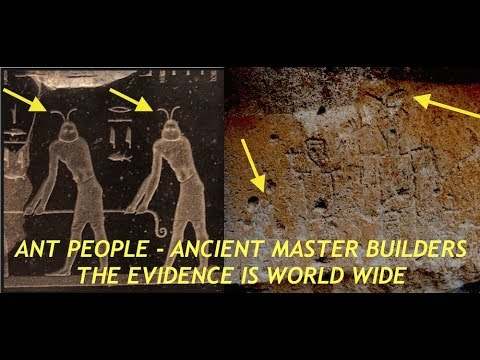 Ant People  Ancient Master Builders  Colony Dised in New Mexico  Los Alamos