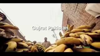 Apna Gujrat-Al sheikh fruit chat