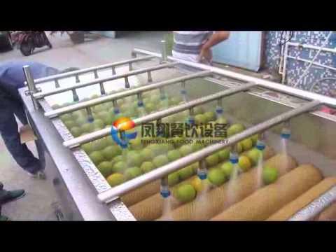 HP-360 Fruit Washing Machine