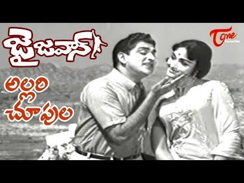 ANR Old Songs | Jai Jawan Movie | Allari Choopula Song | ANR | Bharathi - OldSongsTelugu