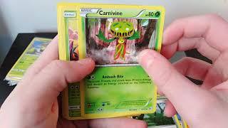Mystery Pokemon Package??!