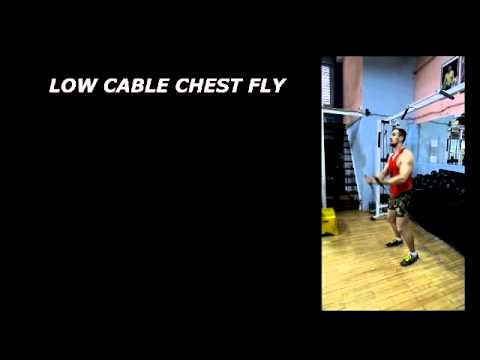 Low Cable Chest Fly (B-7)