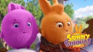 Sunny Bunnies - ADVENTURE DAY | Cartoons For Children | Funny Cartoons For Children