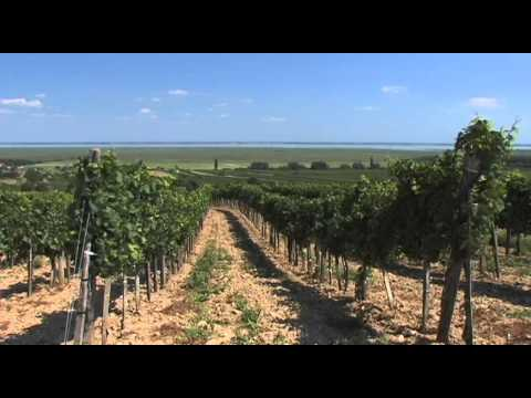 Neusiedler See Vacation Travel Video Guide