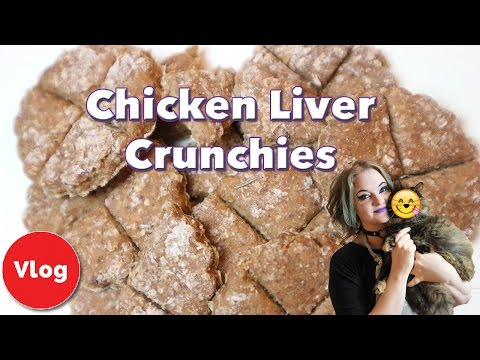 how-to-make-chicken-liver-crunchies!-nutritious-homemade-treats-for-your-cat!-+-competition!