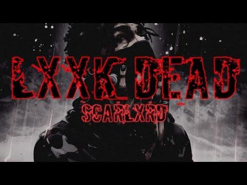 Dxxm Lyrics