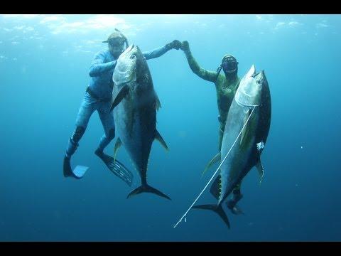 Панамские Будни #2. Первая Охота. Panamanian Weekdays. First Spearfishing.