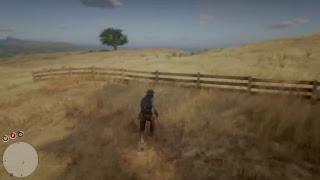 LIVE | Red Dead Redemption 2 #4-Continuiamo