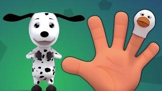 палец семьи животное | палец семьи рифму | дети песня сборник | Animal Finger Family | Baby Song
