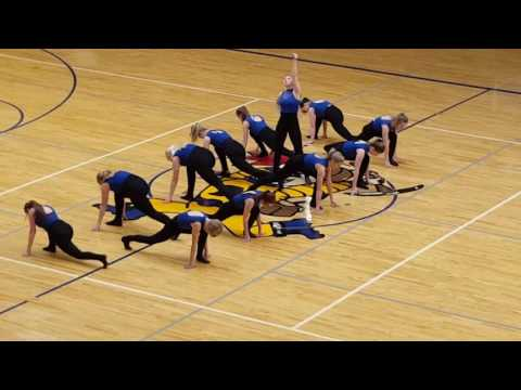 Negaunee High School 2017 Varsity Dance Team