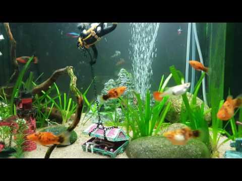 Fish Tank Aquarium Ornament