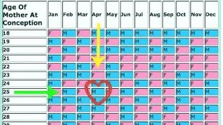Download Chinese Baby Gender Prediction Calendar 2019 Latest And