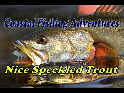 Keeper Speckled Trout In The Creeks Of Sunset Beach, NC