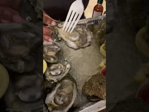 How to PROPERLY eat raw oysters(Chef Approved) ASMR