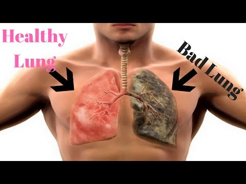 Cleanse and Rejuvenate Smokers Lungs - How to Detox Smokers Lungs Fast