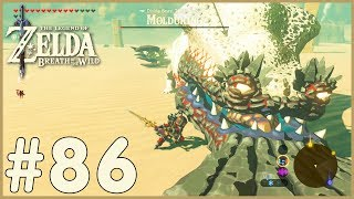Zelda: Breath Of The Wild - Molduking (86)