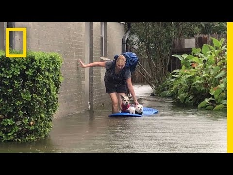 Download Youtube: Hurricane Harvey: Views From South Texas