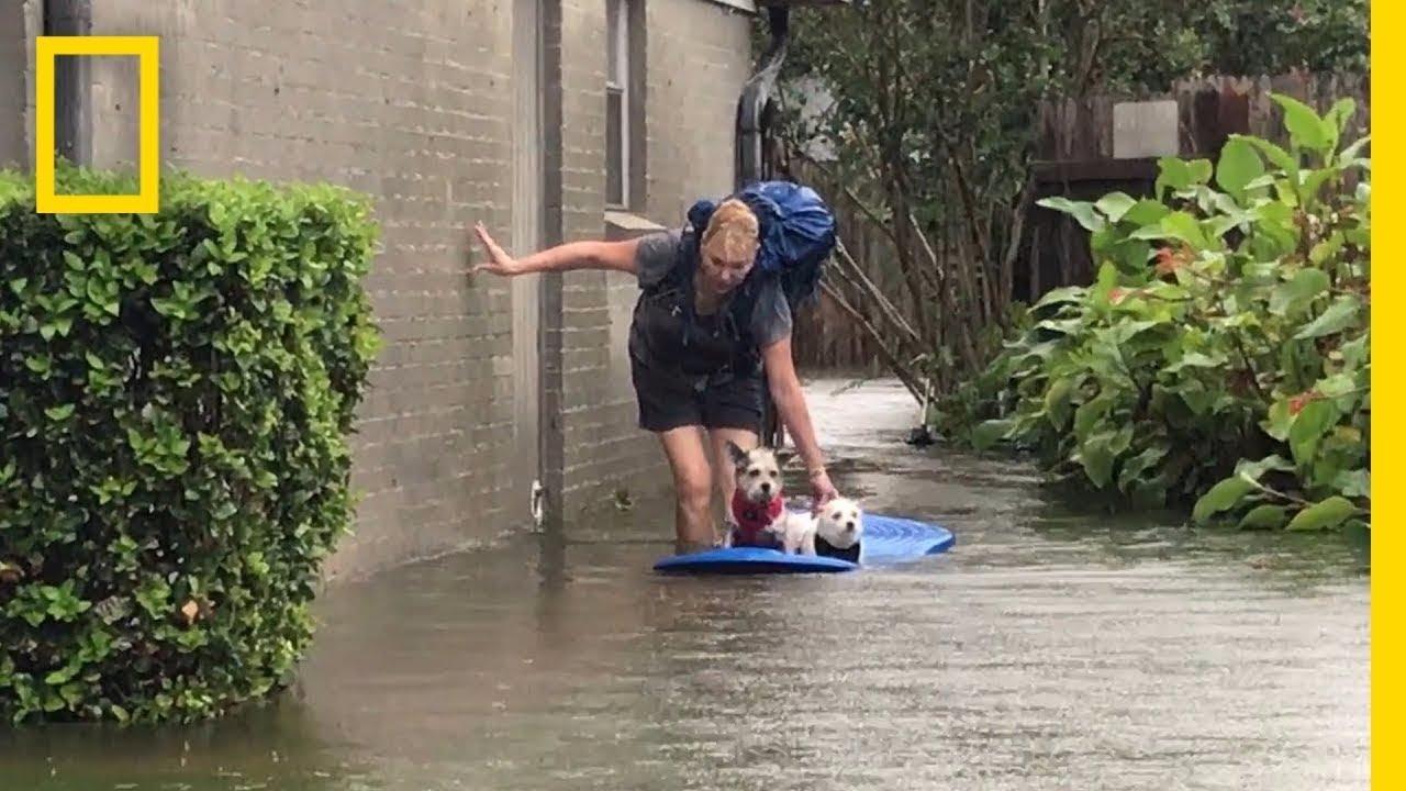 Hurricane Harvey Views From South Texas