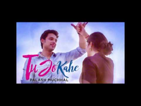 Tu Jo Kahe Lyrics | Palash Muchhal | Full Song |