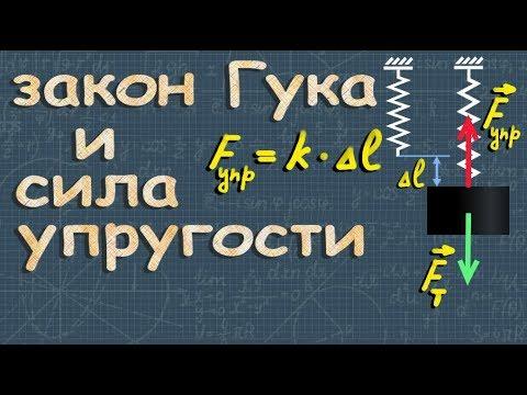 СИЛА УПРУГОСТИ закон Гука 7 класс физика Перышкин