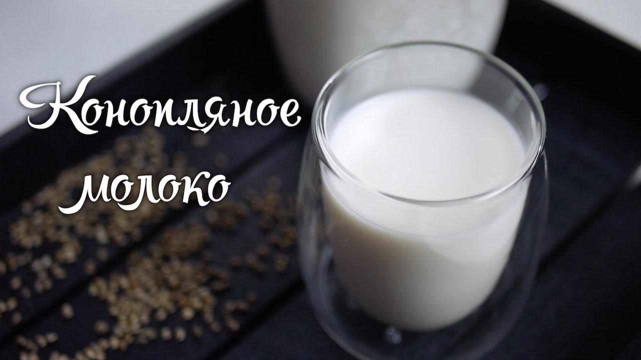 Варим молоко из конопли наказание при крупном размере марихуаны