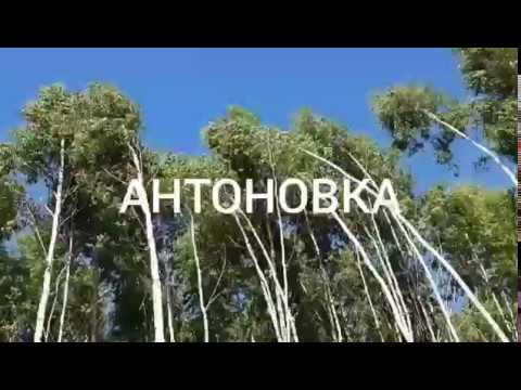 Земельные участки в коттеджном поселке Антоновка, Новосибирск
