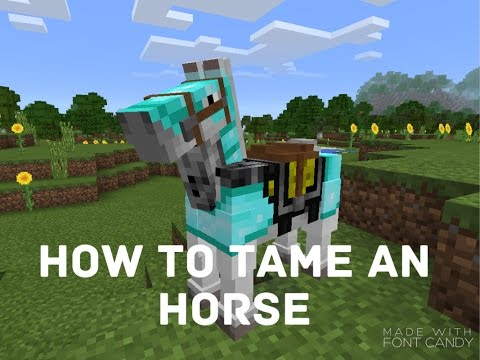 how to ride a horse in minecraft pe